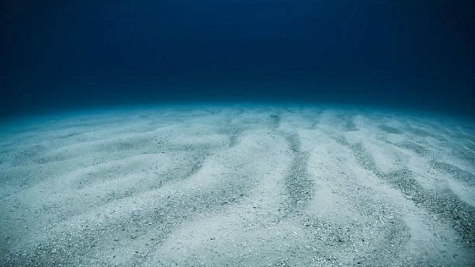 Ilustrasi dasar laut (iStock)