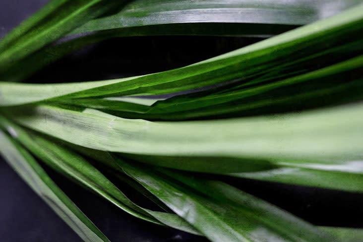 Using fresh pandan leaves adds a lovely fragrance