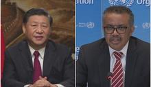 WHO獨立小組:中國、世衛隱匿疫情導致全球淪陷