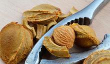 吃杏仁也戰南北?這種杏仁你可不能當零食吃!