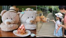北海岸餐廳》小馬貝菈餵迷你馬 三生步道旁下午茶咖啡廳