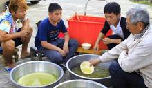 蔡昌憲台南七股體驗「數魚歌」 信心崩盤大喊:我數學不好