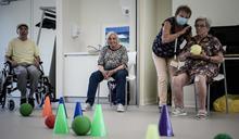 新研究 驗血或可準確預測阿茲海默症