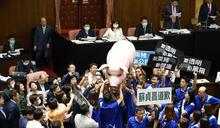 名家論壇》黎榮章/美豬牛議題是藍營起死回生的機會?