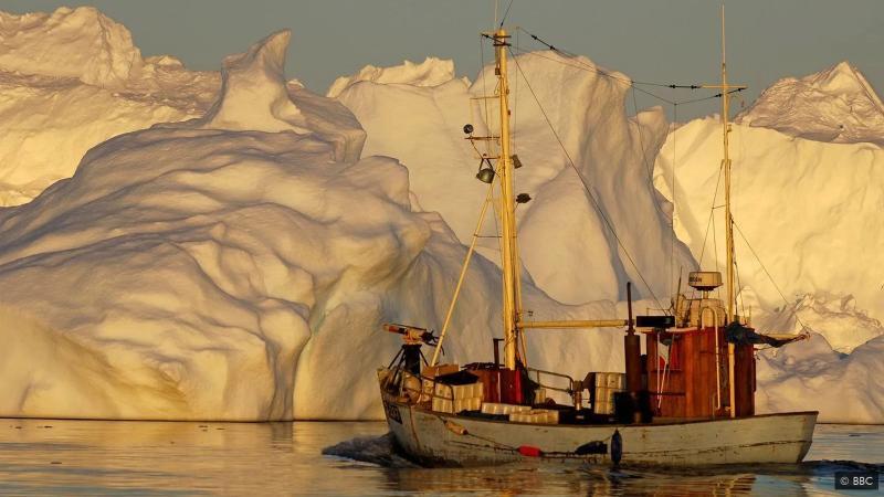 Kutub Utara