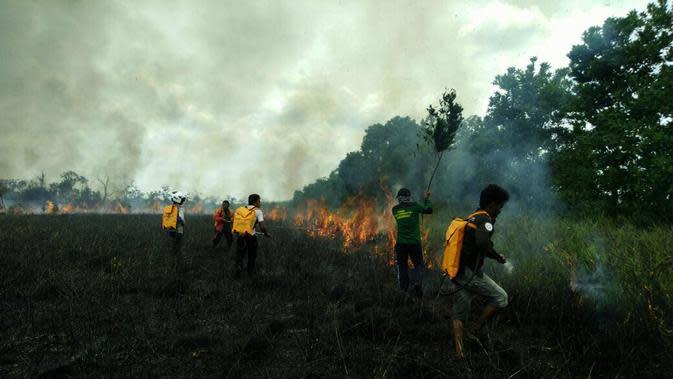 Kebakaran hutan dan lahan sempat mengancam Suaka Margasatwa (SM) Lamandau di Kabupaten Kotawaringin Barat, Kalimantan Tengah. (Foto: BKSDA Kalteng/Liputan6.com/Rajana K)
