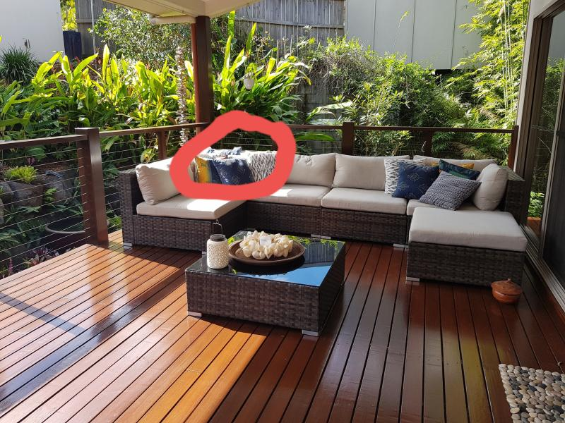 A sunny lounge on the back patio of a Sunshine Coast home is seen. A carpet python can just be seen lounging in the sun on the back of the lounge cushions.