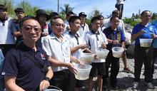 東縣農業處在基翬漁港放流雀鯛 養護海岸珊瑚生態