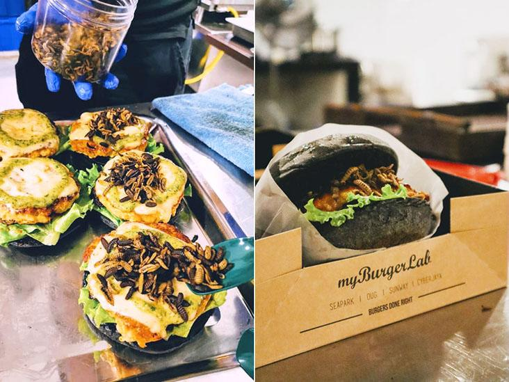 The collaboration between myBurgerLab and Hermy larvae snacks at the Startup Weekend Food KL was a hit!