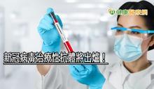 新冠病毒治療性抗體將出爐! 目前已進入動物試驗階段