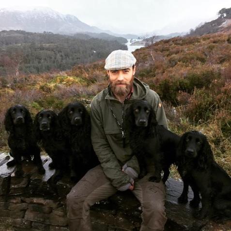<p>So many good dogs. </p>