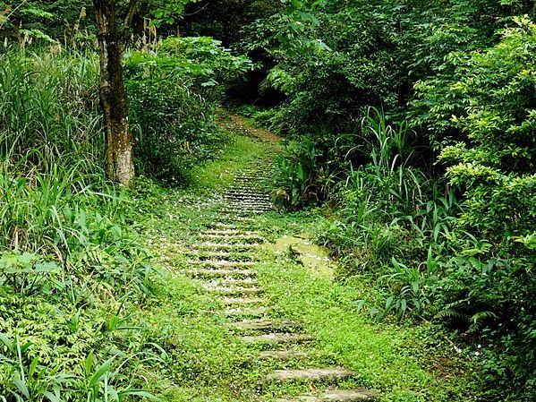 姜子寮步道