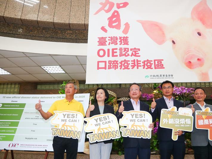 台灣口蹄疫疫區正式除名!養豬業能重返榮耀嗎?