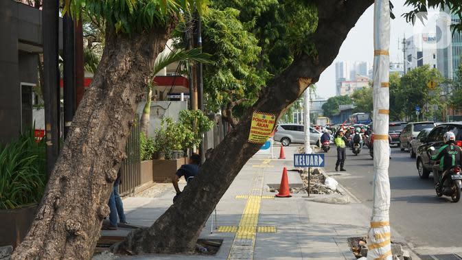 Poster revitalisasi menempel pada pohon yang berada di jalur pedestrian Jalan Kramat Raya, Jakarta, Jumat (8/11/2019). Sepanjang pengerjaan jalur pedestrian, pohon yang berada di jalur tersebut rencananya juga akan direvitalisasi dan diremajakan. (Liputan6.com/Immanuel Antonius)