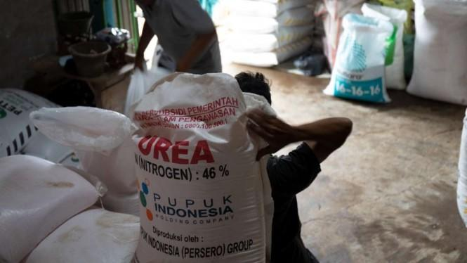 Tidak Ada Kelangkaan, Kementan Jamin Pupuk Subsidi di Jawa Barat Aman