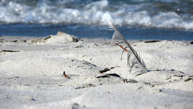 Ilustrasi pasir putih pantai. (dok. Pixabay/Novi Thedora)