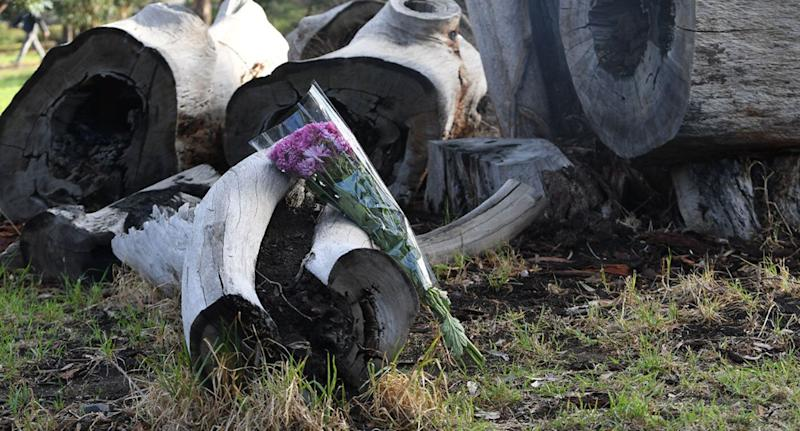 Flowers and cards were laid on a stump of wood in the park. Source: AAP