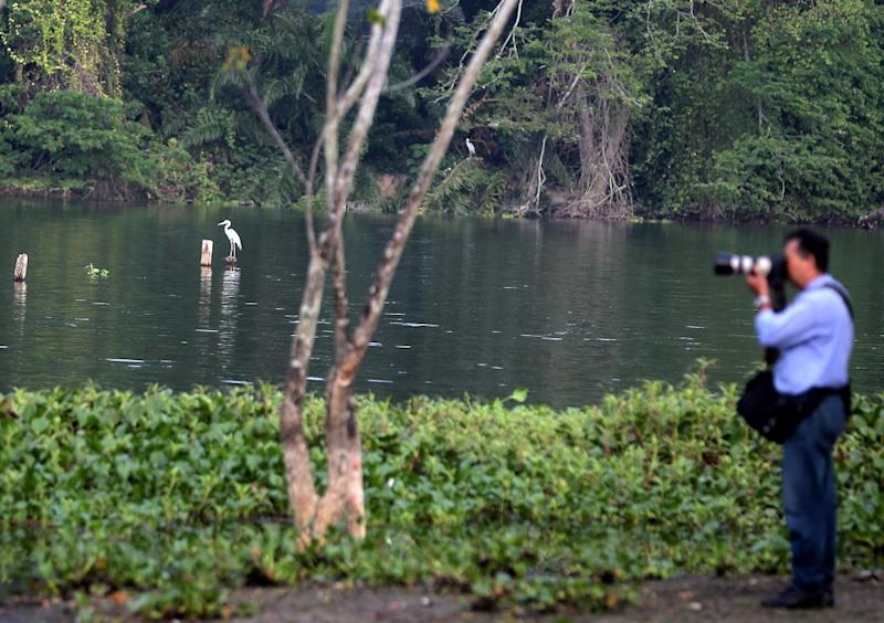 A visitor takes pictures of some birds at the Kinta Nature Park in Batu Gajah. — Picture by Farhan Najib