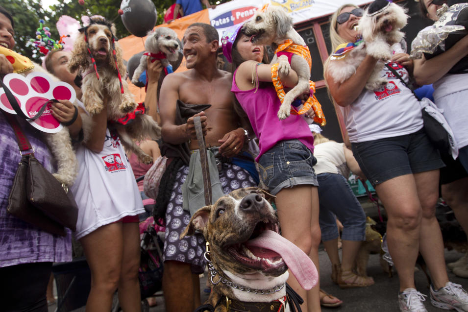 """People pose with their disguised dogs during the """"Blocao"""" dog carnival parade in Rio de Janeiro, Brazil, Sunday, Feb. 3, 2013. According to Rio's tourism office, Rio's street Carnival this year will consist of 492 block parties, attended by an estimated five million Carnival enthusiasts. (AP Photo/Silvia Izquierdo)"""