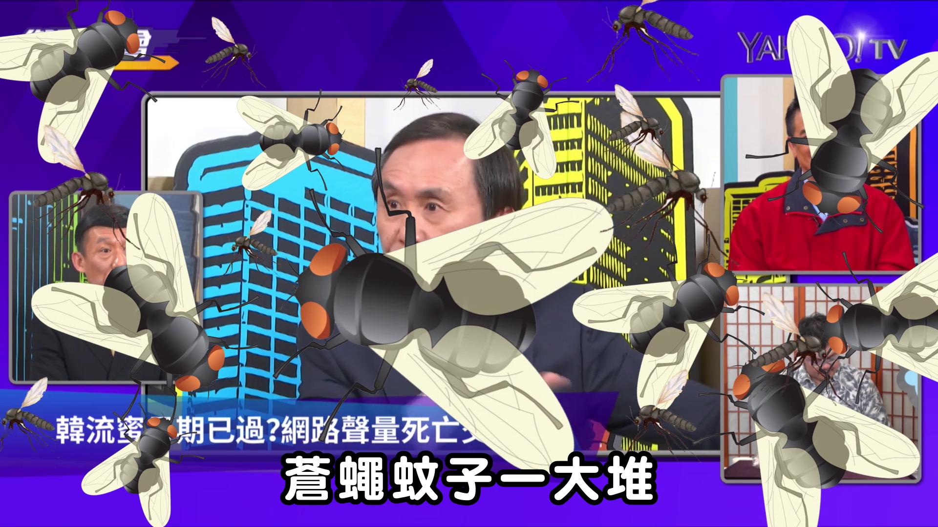吳子嘉:他讓韓國瑜整天對付蒼蠅