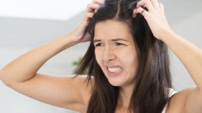 4 kebiasaan yang membuat rambut Anda rusak secara tidak sadar. (Foto : lifehack.org)
