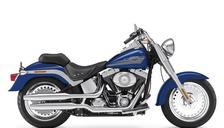 2009 Harley-Davidson Softail FLSTF
