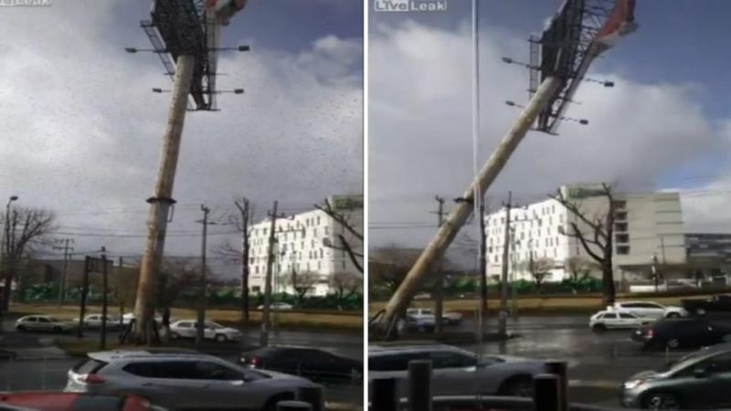 Cars crushed as huge billboard collapses across busy highway