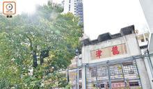 九龍城樂善堂小學改建過渡屋 51基層家庭已入伙