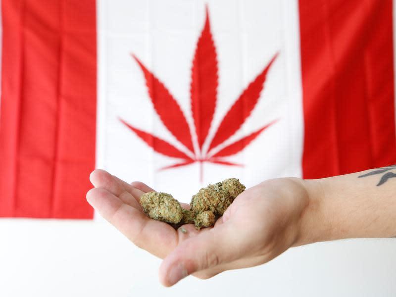 世界第二 加拿大大麻全面合法