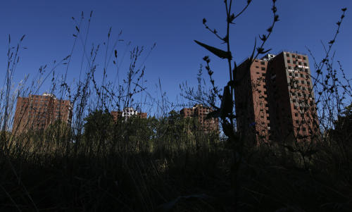 The Frederick Douglass Homes are shown through overgrown grass in Detroit, Wednesday, Sept. 4, 2013. The graffiti-covered complex comprising several city blocks is better known as the Brewster projects. A $6.5 million emergency federal grant covers the initial phase of demolition and cleanup, and officials say the city will be eligible for more money when that's completed. The federal money comes at a crucial time for the city, which is overseen by a state-appointed emergency manager and in July became the nation's largest city to file for bankruptcy.(AP Photo/Paul Sancya)