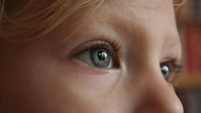 mata (Sumber: Pixabay)