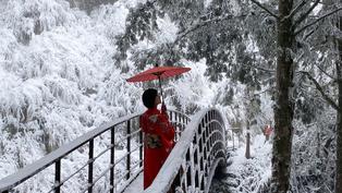 線上追雪!寒流發威不想出門?一次看遍台灣各地超美雪景