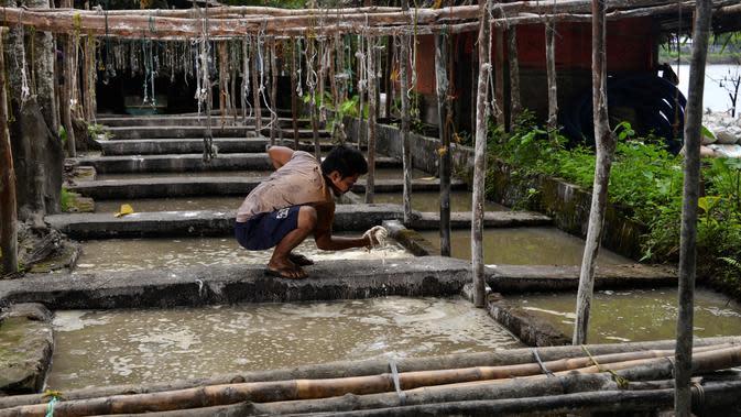 Gambar pada 9 Februari 2020 menunjukkan pekerja memeriksa endapan tepung sagu saat proses pengolahan di sebuah desa di Meulaboh, provinsi Aceh. Tepung sagu adalah jenis tepung yang berasal dari pohon rumbia atau pohon aren, dan pohon jenis ini banyak ditemukan bagian timur. (CHAIDEER MAHYUDDIN/AFP)