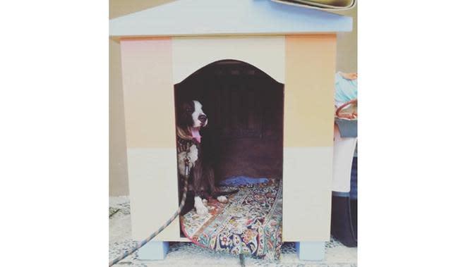 6 Potret Isi Rumah Dylan Carr, Ada Boneka Spesial di Kamar Tidur (sumber:Instagram.com/terryacarr)