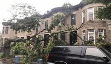 狂風拔樹堵門 華人一家被困