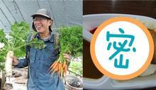 劉克襄怨「排雲餐」太單調!一看富士山菜單 網秒選台灣