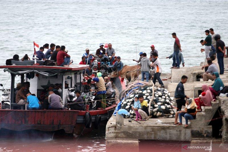 Libur Idul Adha, pergerakan penumpang transportasi umum meningkat