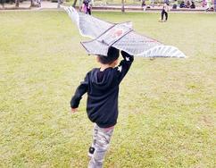 小小木頭人  成為未來之星