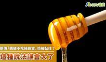 網傳「螞蟻不吃純蜂蜜」怕被黏住? 這種說法誤會大了
