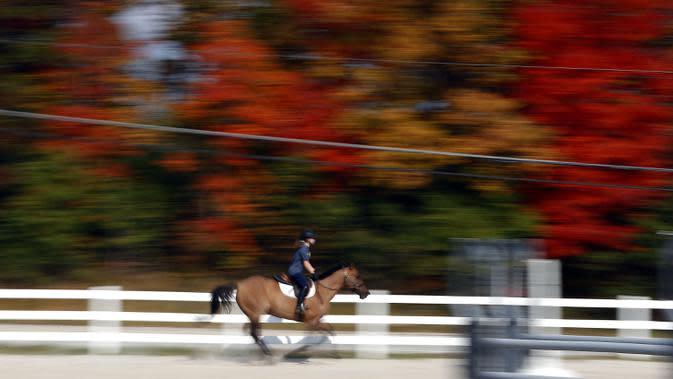 Dalam gambar yang diambil dengan kecepatan rana lambat memperlihatkan Addison Loizzi (13 tahun), dari Danau Zurich, membawa Nova untuk berputar selama Festival Musim Gugur di Palatine Stables, Palatine, Illinois, Amerika Serikat, 10 Oktober 2020. (Brian Hill/Daily Herald via AP)