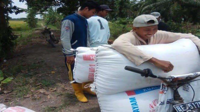 Naik, Harga Gabah Mesuji capai Rp4.500/kg di Tengah Pandemi COVID-19