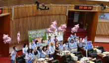 陳其邁首度施政報告 各黨團關注焦點