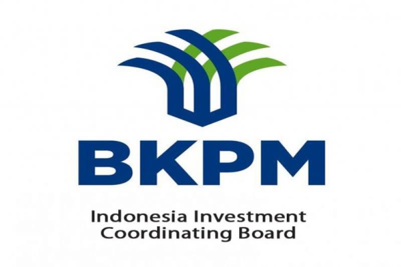 BKPM sebut ada 190 kasus investasi, terbanyak terhambat perizinan