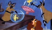 迪士尼經典卡通添加種族警語 兒童世界原來並不單純