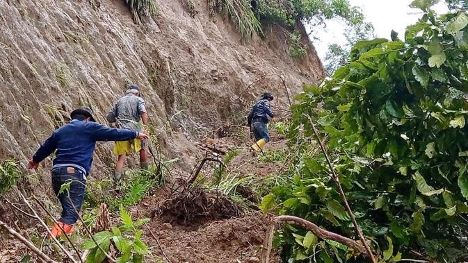 Kehabisan Bahan Pokok, Warga Korban Banjir dan Longsor Mamasa Makan Umbi-umbian