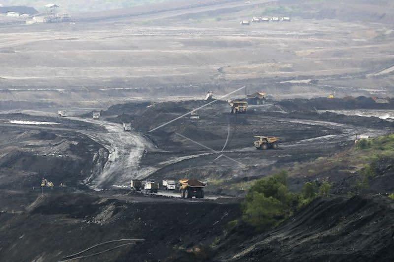 Harga batu bara turun, PT Bukit Asam tingkatkan efisiensi