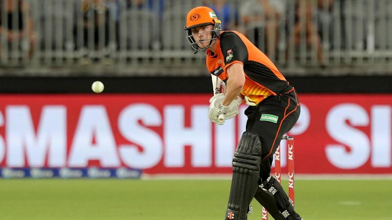 CRICKET BBL SCORCHERS HEAT