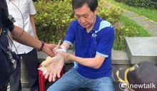 洪孟楷:立院衝突造成費鴻泰右手腕肌腱斷裂 手術一切順利