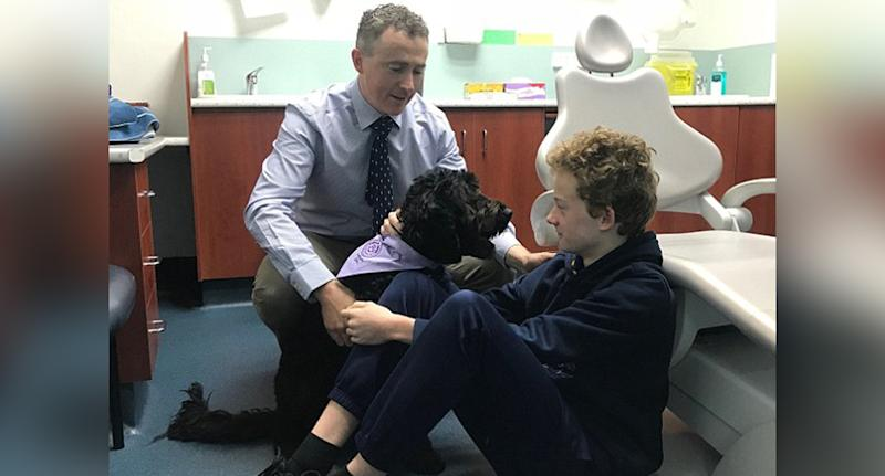 Dr Dan Ford and Comet (pictured) calm young dental patients at the Paediatric Dental Group