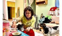 溫暖毛小孩的冬天 認捐寵物飼料用品幫幫牠們吧~
